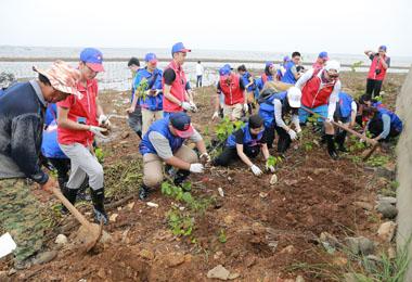 2017 年04 月28 日,亚博体育下载开户技术开展东寨港红树林环保种植活动,种下500 棵树苗